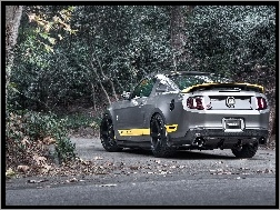 Chicane, Mustang, Ford, Tuning